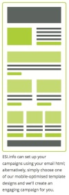 Managed campaign template